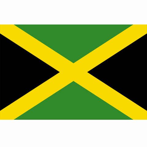 jamaicaanse vlag noord amerika vlaggen survival webshop clipart survival kit survivor clip art free